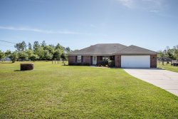 Photo of 2972 Florence DR, MIDDLEBURG, FL 32068 (MLS # 990973)