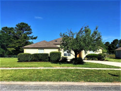 Photo of 1908 Breckenridge BLVD, MIDDLEBURG, FL 32068 (MLS # 993893)
