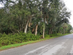 Photo of 0 Collins AVE, ST AUGUSTINE, FL 32084 (MLS # 1000664)