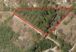 Photo of 0 Mcallister RD, MIDDLEBURG, FL 32068 (MLS # 896882)