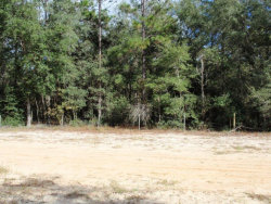 Photo of 1150 Bellamy RD, MELROSE, FL 32666 (MLS # 910265)
