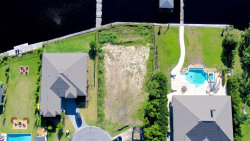 Photo of 5012 Eagle Nature TRL, JACKSONVILLE, FL 32244 (MLS # 932108)