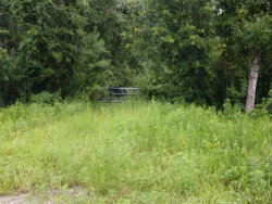 Photo of 3260 State Road 21, MIDDLEBURG, FL 32068 (MLS # 942378)