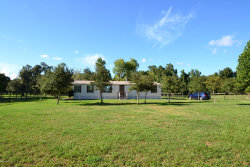 Photo of 8000 Cr 208, ST AUGUSTINE, FL 32092 (MLS # 937673)