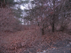 Photo of Richard Hill Rd, Hillsdale, NY 12529 (MLS # 229840)