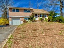 Photo of 128 Franklin Boulevard, Franklin, NJ 08873 (MLS # 1920795)