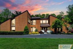 Photo of 12 Ditzel Farm Court, Scotch Plains, NJ 07076 (MLS # 2004588)