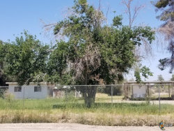 Photo of 1566 E ALAMO RD, Holtville, CA 92250 (MLS # 18352866IC)
