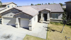 Photo of 183 APPALOOSA ST, Brawley, CA 92227 (MLS # 19463972IC)